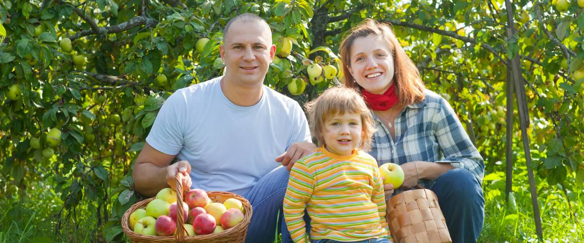 Family sititng in an apple orchard