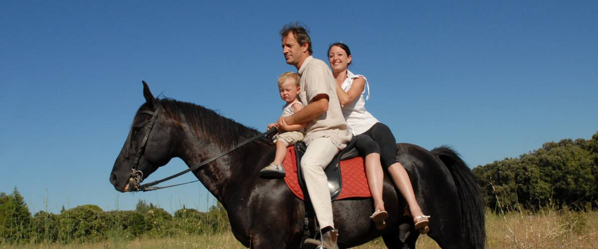 Family riding on a horse