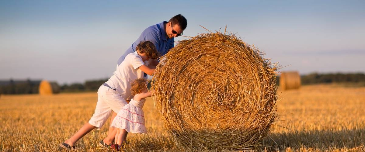 Father and kids in a hay field