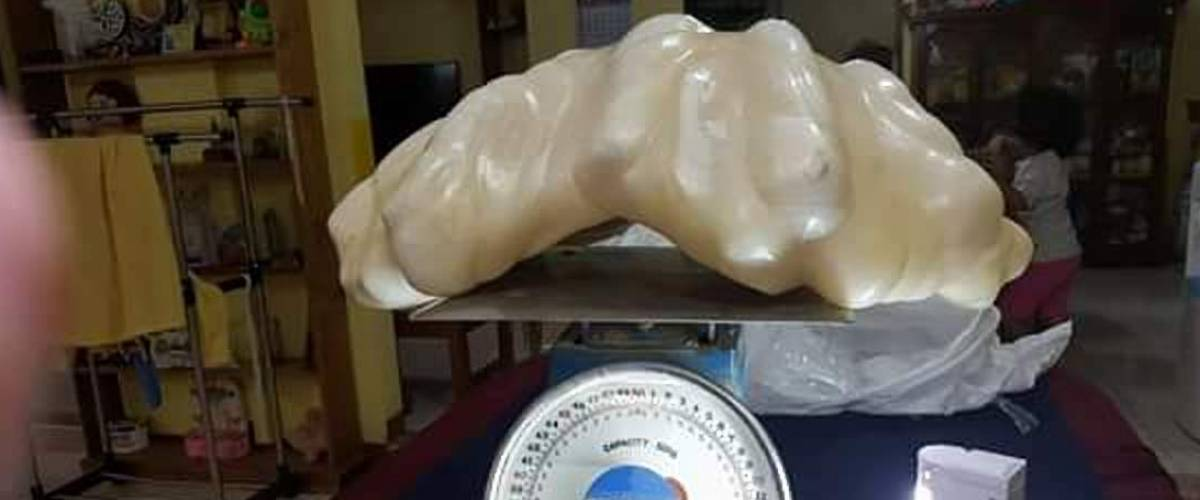 The world's largest pearl, which had been stashed for many years under a man's bed in the Philippines.