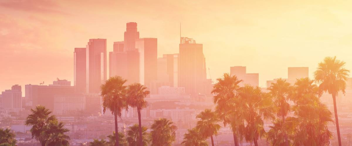 Los Angeles hot sunset view with palm tree and downtown in background. California, USA theme - background. Art photography