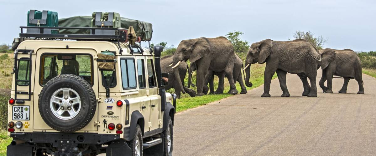 KRUGER NATIONAL PARK, SOUTH AFRICA NOV 9: Visitors in a land-rover on Safari in South Africa
