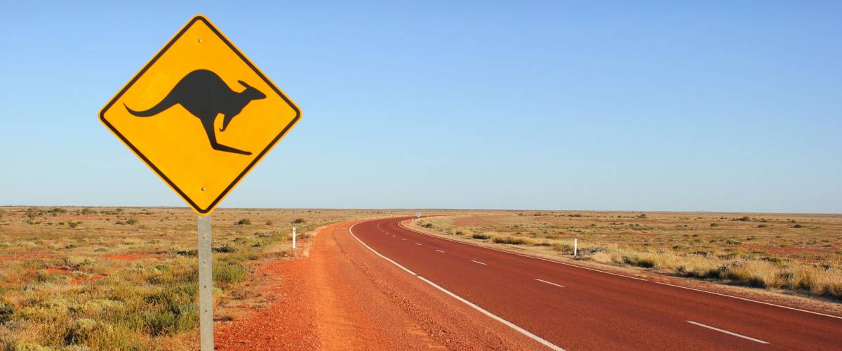 Kangaroo traffic sign