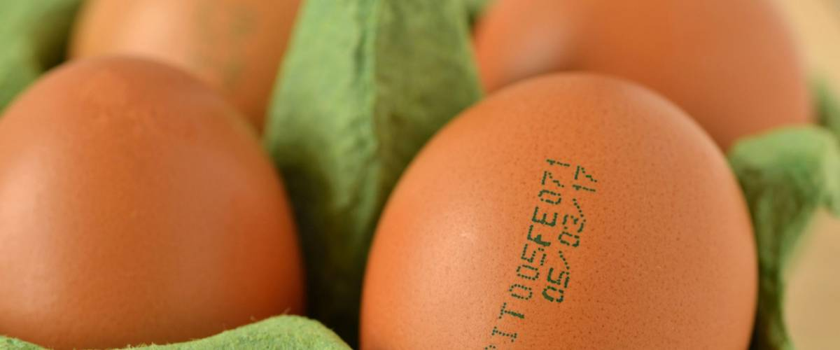 Close-up of eggs with expiration date