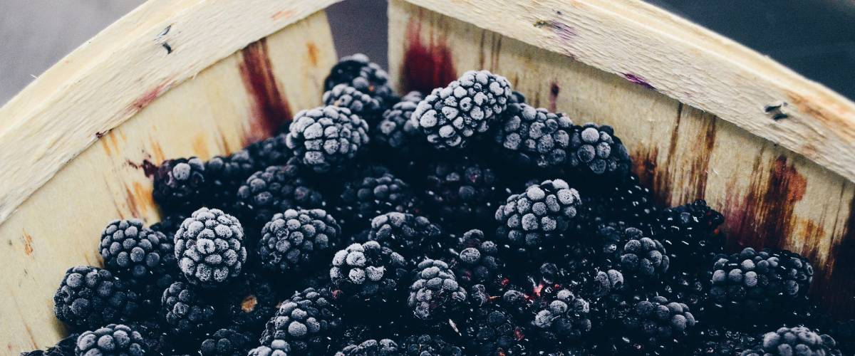 Blackberries in a basket.
