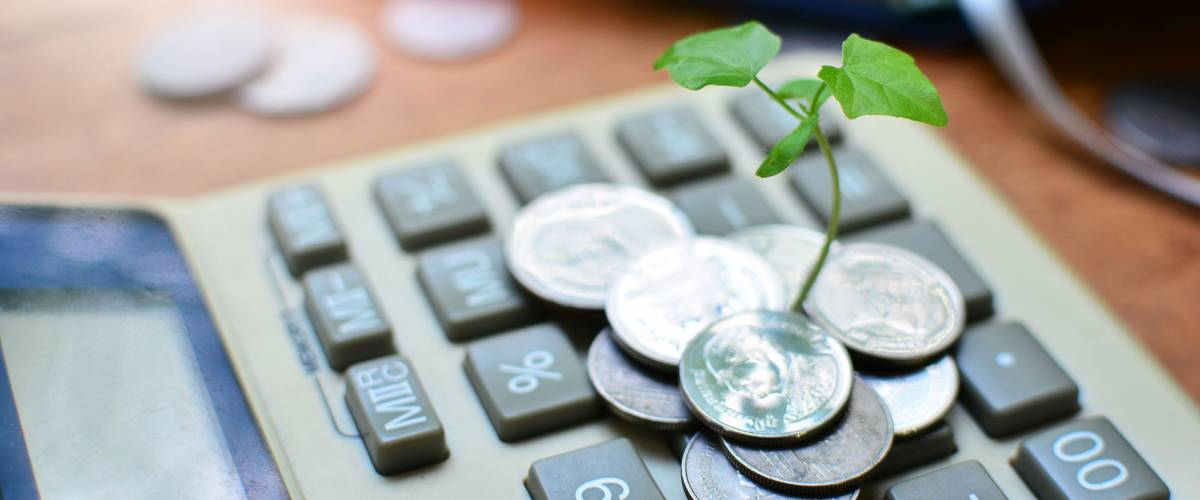 Plant growing out of coins on top of a calculator
