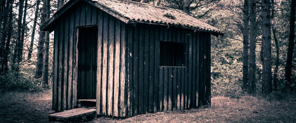 Weird cabin in a dark and mysterious forest