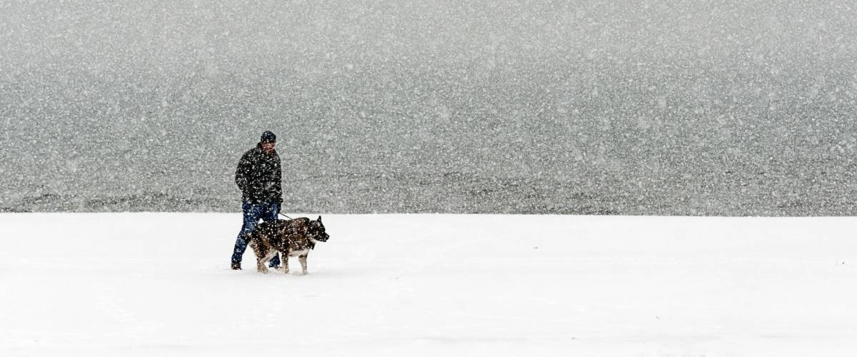 Man walking his dog by Lake Michigan in the middle of the snow storm