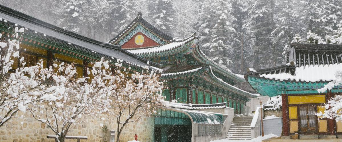 Beautiful winter landscape with snow covered trees and asian temple Odaesan Woljeongsa in Pyeongchang, Korea