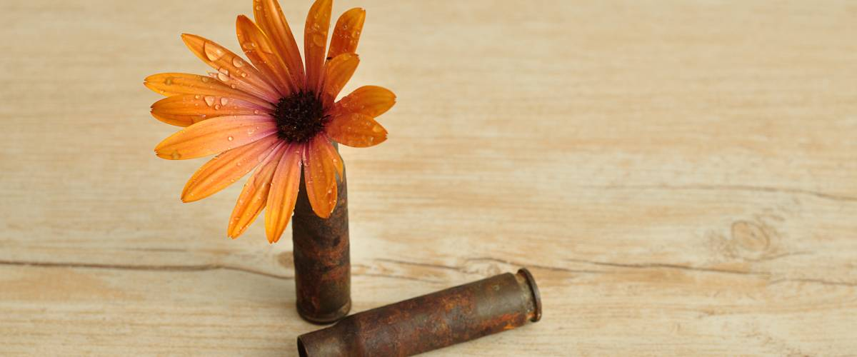 A flower with bullet casings, symbolizing peace