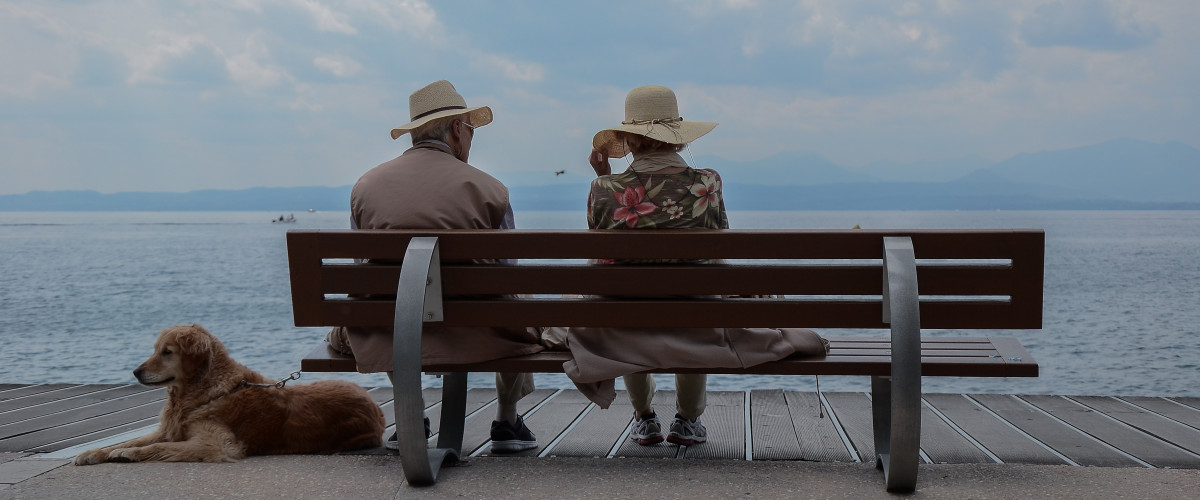 An older couple and their dog sitting on a park bench looking out at the water