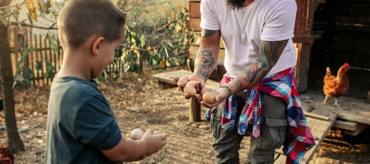 Beared man with tattooed arms and a flannel shirt tied around his waist shares eggs from a henhouse with young boy
