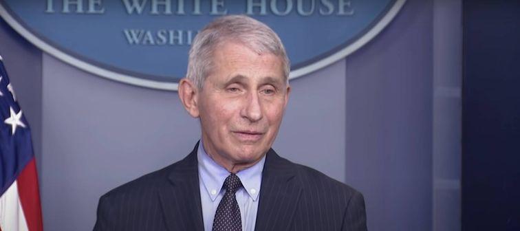 Dr. Anthony Fauci speaks to reporters in Washington DC.