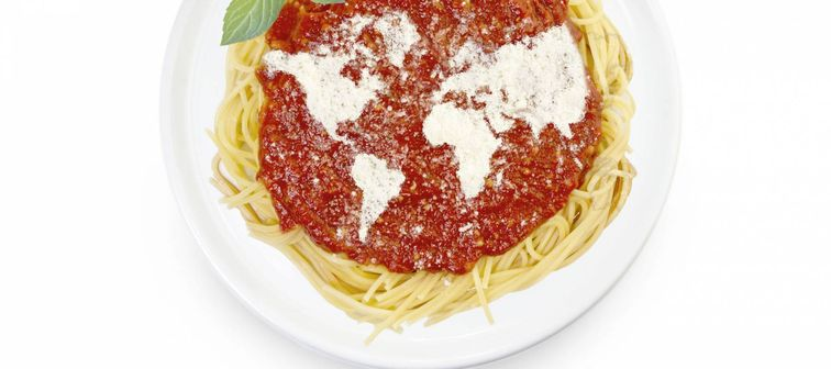 Freshly cooked dish of tasty pasta with tomato sauce and parmesan cheese in the shape of the world .(series)