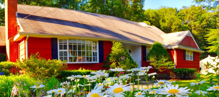 Red house with daisies