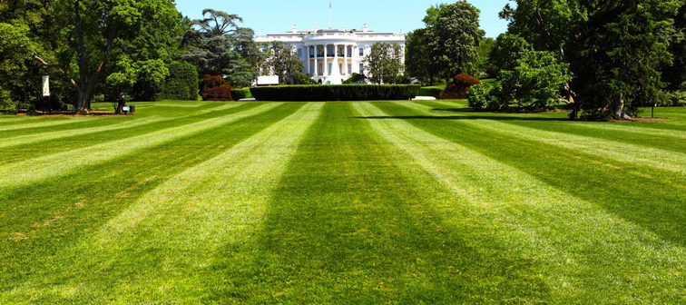 The White House, the President of the United States