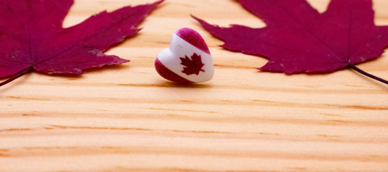 Canada flag in shape of heart with two red maple leaves on wooden background with copy space. Canada day